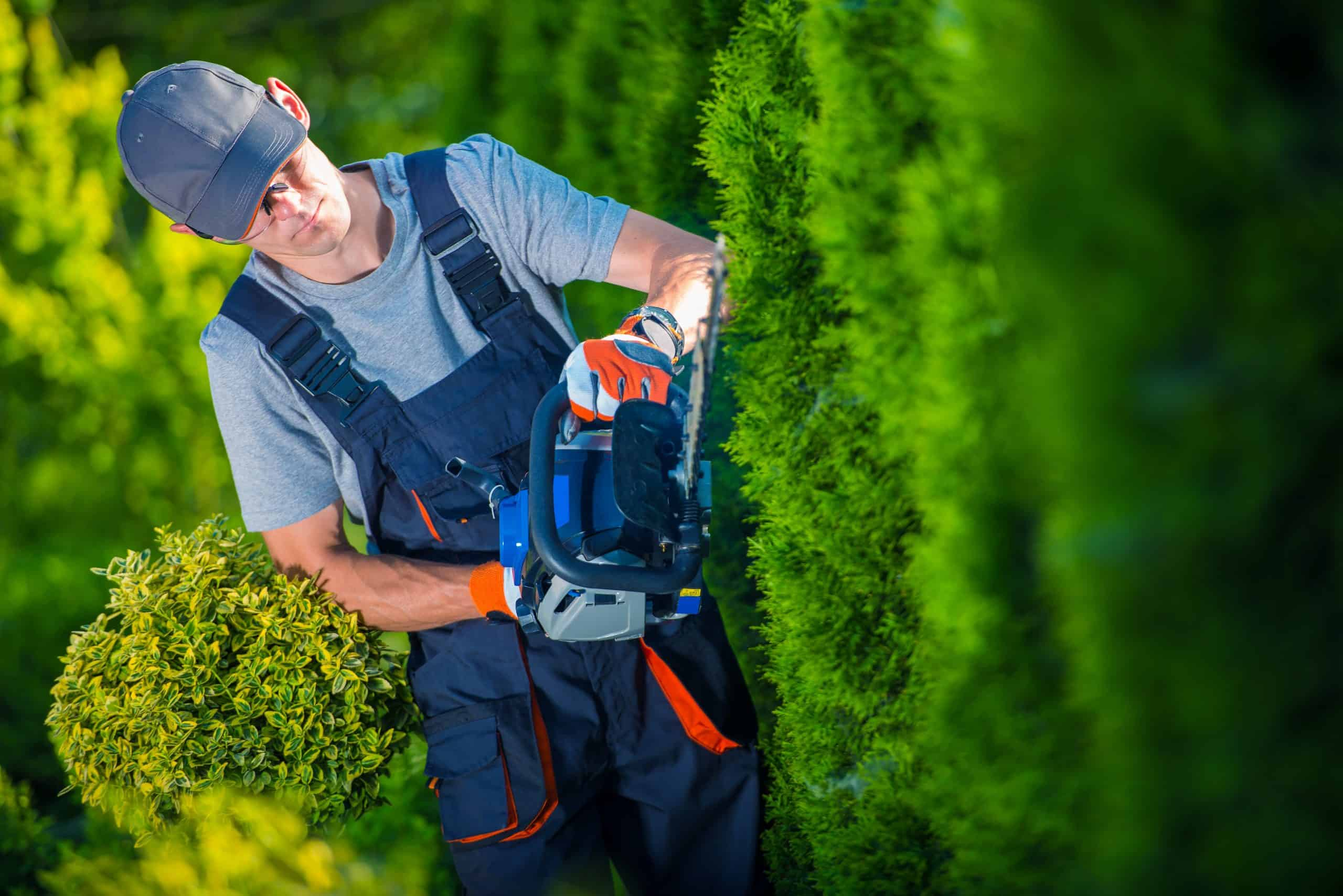 Working Capital for Landscapers
